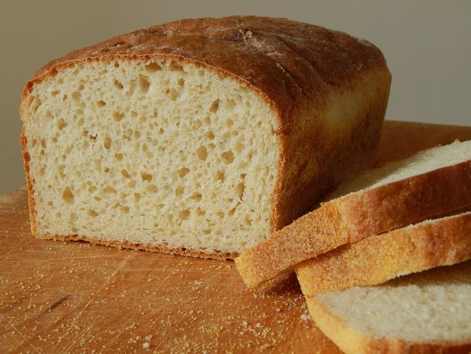 fast rising yeast